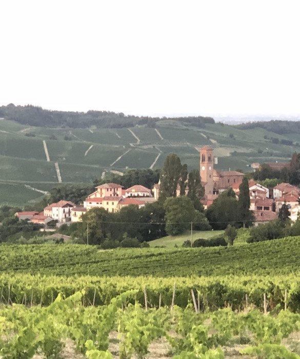 Patrimonio Unesco Ricaldone in Piemonte - Italy